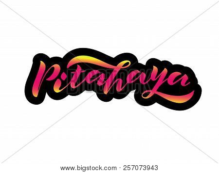 Handwritten Lettering Pitahaya With Black Contour. It Is Isolated Pink Inscription Dragon Fruit. Bri