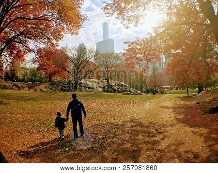 Father And Son Holding Hands In Central Park, New York.