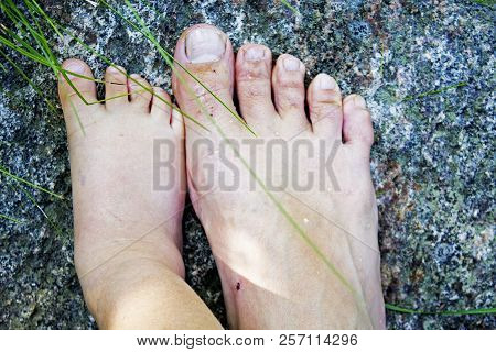 Baby And Parent Feet Standing On Stone