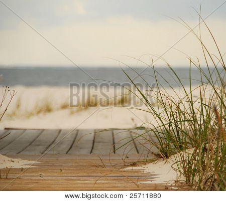 Sandy Boardwalk