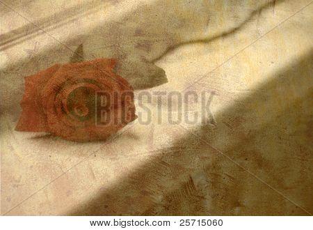 Rose on Windowsill with Antique Overlay