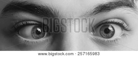 eyes with squinted look and eyebrows on male face. Grimace. Strabismus poster