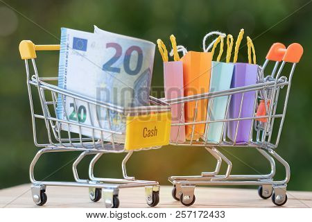 Euro Banknotes And Colorful Shopping Paper Bags In Trolleys On Table With Nature Background. Consume