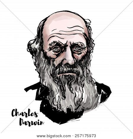 Charles Darwin Watercolor Vector Portrait With Ink Contours. English Naturalist, Geologist And Biolo