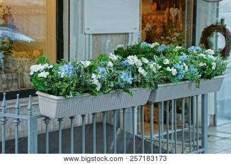 Two White Flowerpots With Decorative Green Vegetation And Flowers On The Fence Rods At The Glass Win