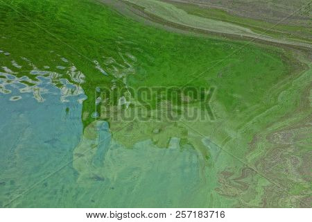 Green Texture Of Dirty Water In A Reservoir