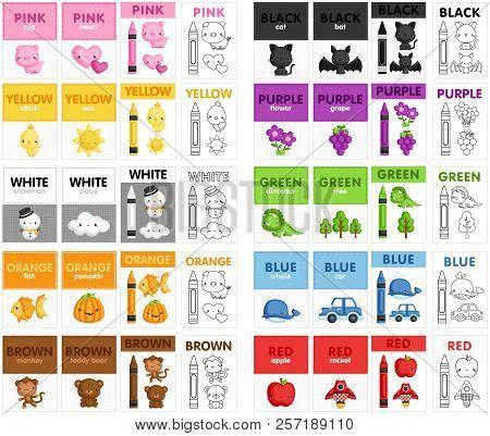 A Vector Set Of Cute Color Flash Card