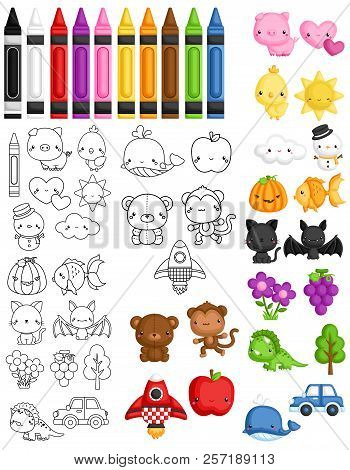 A Vector Set Of Cute Color Introduction Items