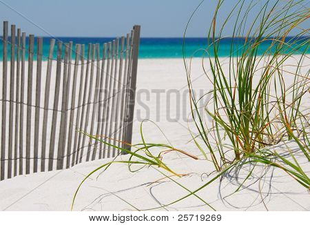 Sand dune fence and grasses on beautiful beach