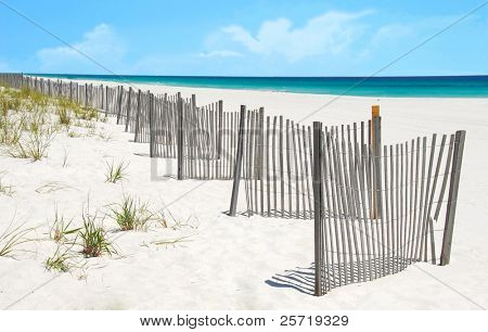 Sand dune fence and grasses at pretty beach