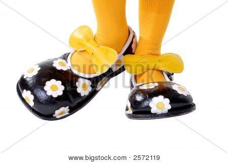 Large Clown Shoes