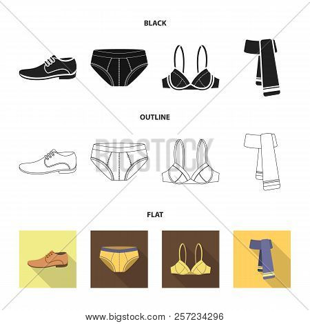 Male Shoes, Bra, Panties, Scarf, Leather. Clothing Set Collection Icons In Cartoon Style Vector Symb