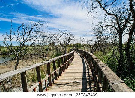 Wooden Bridge In Nature In Autumn. National Park Tablas Daimiel. Ciudad Real. Spain.