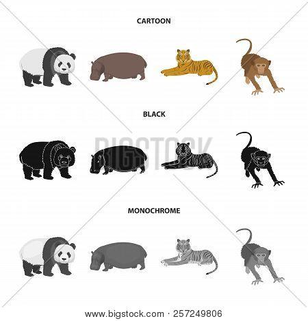 Bamboo Bear, Hippopotamus, Wild Animal Tiger, Monkey . Wild Animal Set Collection Icons In Cartoon,