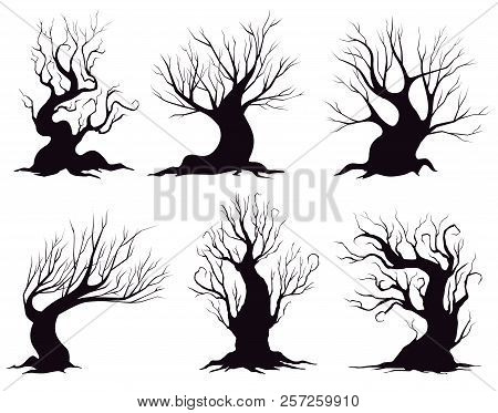 Set Of Different Silhouettes Of Fantasy Trees Isolated On White Background. Vector Illustration