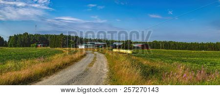 Panorama of typical Finnish countryside in summer in province of Oulu, Northern Ostrobothnia region, Finland. Agricultural fields and dirt road to red wooden house in village on horizon poster
