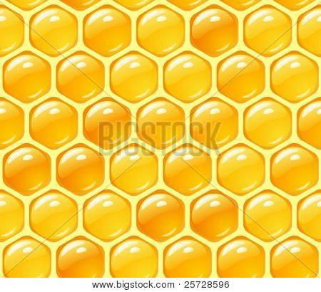 Vector honey background