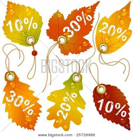 Autumnal discount. Vector fall leaves