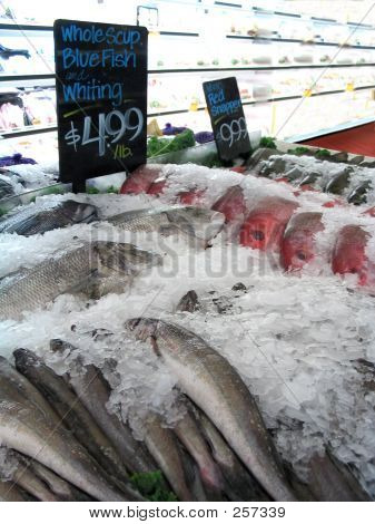 Fish For Sale On Ice