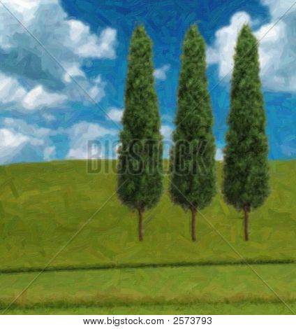 Cypres Trees