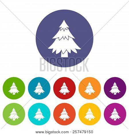 Coniferous Tree Set Icons In Different Colors Isolated On White Background