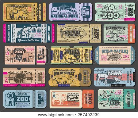 Zoo Tickets For Zoological Park. Vector Vintage Admit Ticket Design Of Wild Bear, Wolf Or Duck And W