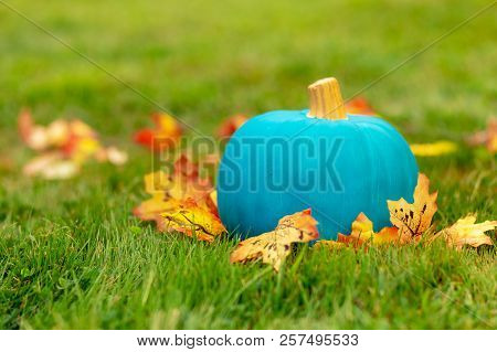Teal Pumpkin Outside. Symbol Of Alternative Non-food Treats For Kids With Food Allergy. The Concept