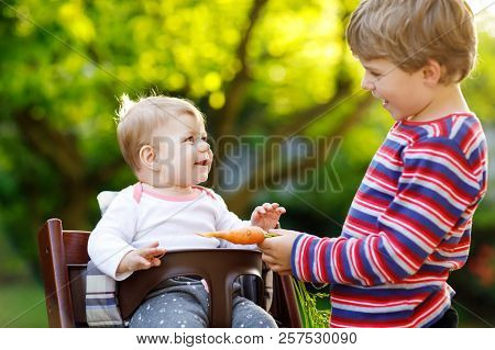 Little Blond Kid Boy Giving A Carrot To Baby Sister. Happy Siblings Having Healthy Snack. Baby Girl