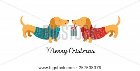 Collection Of Christmas Dogs, Merry Christmas Illustrations Of Cute Pets With Accessories Like A Kni