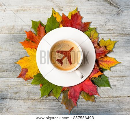 Coffee cup with maple symbol on autumn colorful leaves on wooden table, top view
