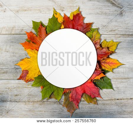 Autumn colorful leaves with blank round paper on wooden table, top view