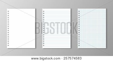 Blank Paper, Lined Paper And Square Paper With Holes On Grey Background.