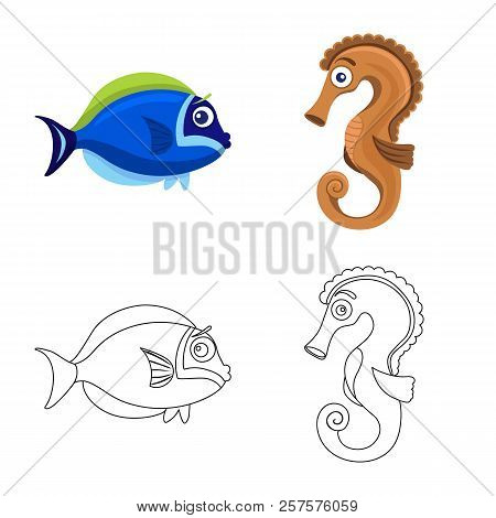 Vector Design Of Sea And Animal Logo. Set Of Sea And Marine Vector Icon For Stock.