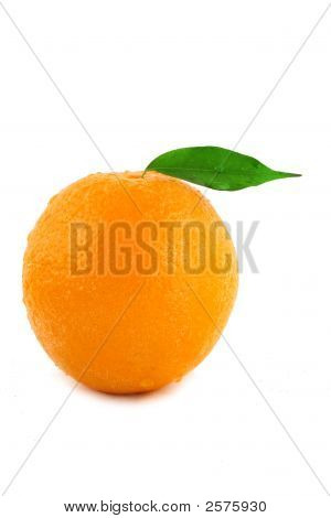 Orange Detail On White Background