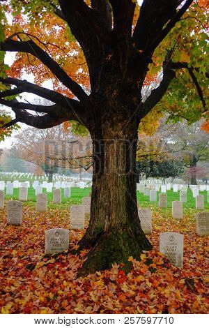 Washington DC / United States - November 05 2015: Tombstones in Autumn - Arlington National Cemetery in Washington DC United States of America