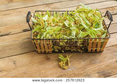 Flowers Of A Linden On Basket On A Wooden Table