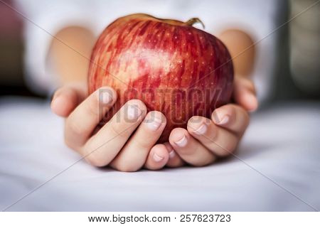Hands Of A Caucasian Child Holding A Red Delicious Apple. Children With Healthy Food, Vegetarian Die