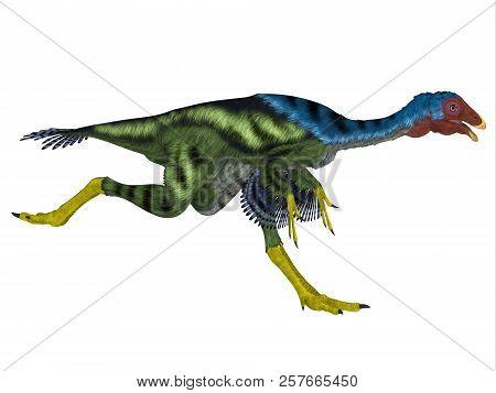 Caudipteryx Dinosaur Running 3d Illustration - Caudipteryx Was An Oviraptor Beaked Carnivorous Dinos