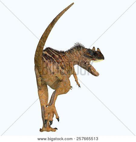 Ceratosaurus Dinosaur Tail 3d Illustration - Ceratosaurus Was A Theropod Carnivorous Dinosaur That L