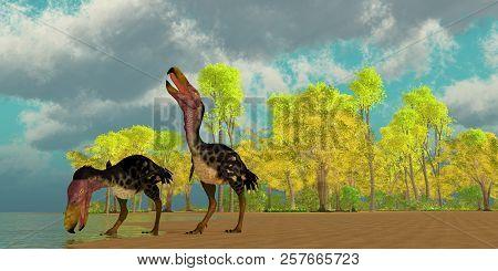 Miocene Kelenken Birds 3d Illustration - Two Kelenken