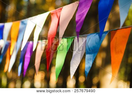 Carnival Garland with Flags, Decorative Party Pennants for Birthday Celebration, Festival and Fair Decoration, Hanging Flags, Bunting Flags ,Triangle Fabrics Hanging on the Rope, Bunting Background