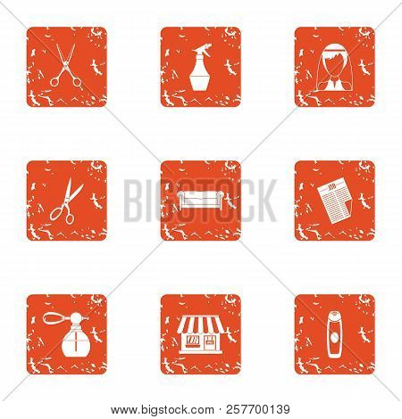 Stylist place icons set. Grunge set of 9 stylist place icons for web isolated on white background poster