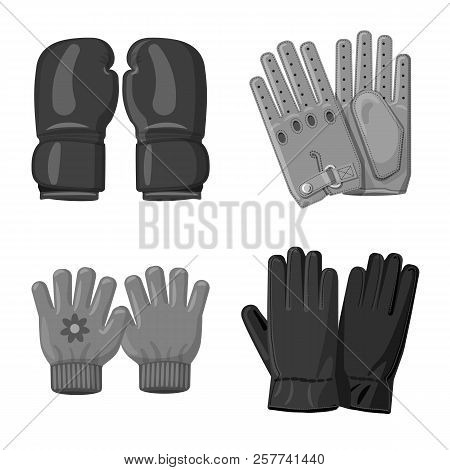 Vector Illustration Of Glove And Winter Icon. Set Of Glove And Equipment Stock Symbol For Web.