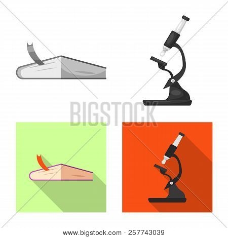 Vector Illustration Of Education And Learning Sign. Collection Of Education And School Stock Symbol