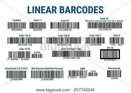 A Set Of Bar Codes. Linear Barcodes. Vector Illustration