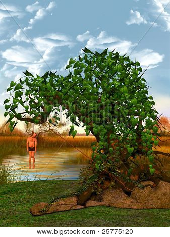 Hangman In A Tree.