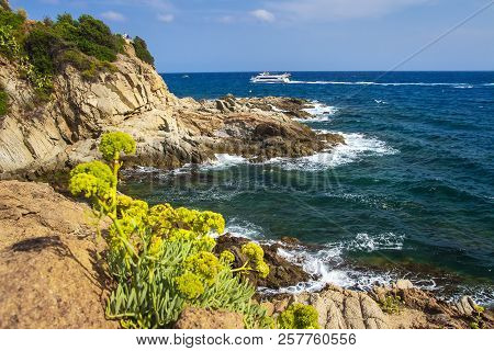 Sea And Rocky Coastline In Lloret De Mar On Sunny Summer Day. Spanish Seascape In Costa Brava. Medit