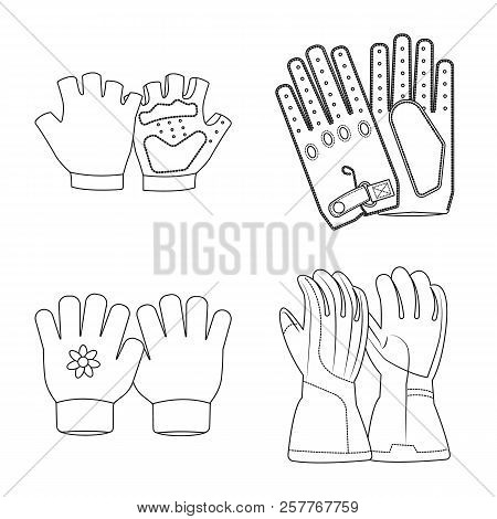 Vector Illustration Of Glove And Winter Symbol. Set Of Glove And Equipment Stock Symbol For Web.