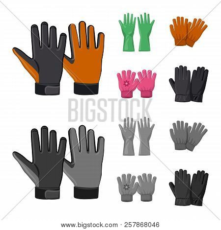 Isolated Object Of Glove And Winter Logo. Set Of Glove And Equipment Stock Vector Illustration.
