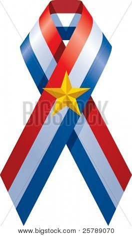 A vector illustration of a patriotic ribbon with a gold star in the middle